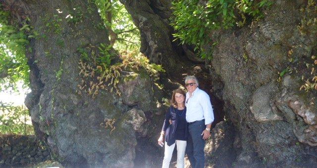 Giovanna e Sergio Asciutti sotto il castagno millenario